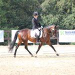 pferd-olpe-drolshagen-essinghausen-turnier-erlenhagen-img03-150x150 Turnier in Erlenhagen Turniere  Turnier Erlenhagen