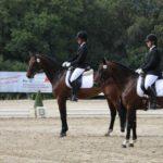 pferd-olpe-drolshagen-essinghausen-turnier-erlenhagen-img06-150x150 Turnier in Erlenhagen Turniere  Turnier Erlenhagen