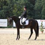 pferd-olpe-drolshagen-essinghausen-turnier-erlenhagen-img07-150x150 Turnier in Erlenhagen Turniere  Turnier Erlenhagen