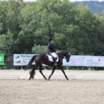 pferd-olpe-drolshagen-essinghausen-turnier-erlenhagen-img08-150x150 Turnier in Erlenhagen Turniere  Turnier Erlenhagen