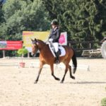 pferd-olpe-drolshagen-essinghausen-turnier-erlenhagen-img10-150x150 Turnier in Erlenhagen Turniere  Turnier Erlenhagen