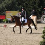 pferd-olpe-drolshagen-essinghausen-turnier-erlenhagen-img13-150x150 Turnier in Erlenhagen Turniere  Turnier Erlenhagen