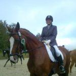 pferd-turnier-netphen-havanna-tanja-01-1-150x150 Turnier in Netphen. Turniere  Tanja Heuel Netphen Höherhaus
