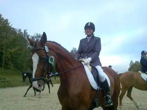 pferd-turnier-netphen-havanna-tanja-01 Turnier in Netphen. Turniere  Tanja Heuel Netphen Höherhaus
