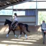 drolshagen-essinghausen-sitztraining-rolf-grebe-12-150x150 Bewegungstraining mit Rolf Grebe RG-Hof-Höherhaus  Rolf Grebe Essinghausen Drolshagen Bewegungstraininng