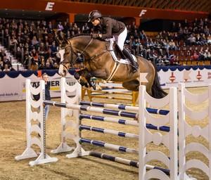 Coronas 2013-der Jahresrückblick Turniere  Verbandsmeister Reiterball Jahresrueckblick Hengstschau