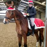 weihnachten-1-von-1-150x150 Frohe Weihnachten und einen guten Rutsch! RG-Hof-Höherhaus  Olpe Guten Rutsch ins neue Jahr Frohe Weihnachten Drolshagen