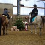 Weihnachtsreiten #1: Dodo und Diego suchen den Weihnachtsstern RG-Hof-Höherhaus  Weihnachten Olpe Kinder Geschichte Essinghausen Drolshagen