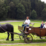 Hochzeit-1-von-1-150x150 Sicherheit geht vor: Der neue Kutschenführerschein der FN RG-Hof-Höherhaus  Sicherheit im Straßenverkehr Kutschenführerschein Kutsche Kornelius Klaas FN